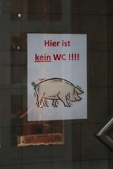 Bad Ragaz - Pigs!