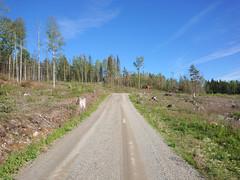 Lierveien, Skansehytta, Askim,Indre Østfold, Viken, Norway