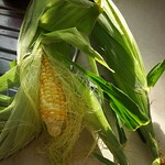 Corn for tacos