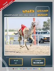 صور أشواط الحيل والزمول العامة بالمحلي السابع (صباح) ٢٢-٢-٢٠٢٠