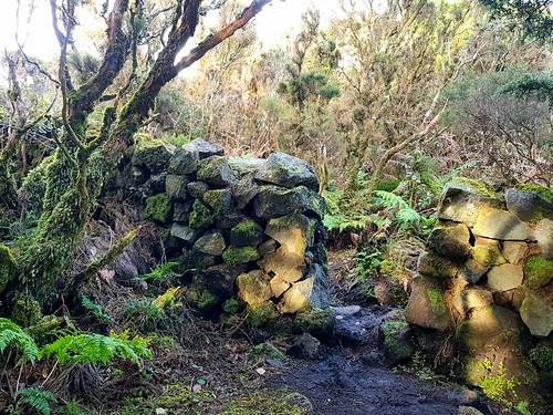 The Trail of the Black Mystery's | PRC01TER | Terceira | Azores