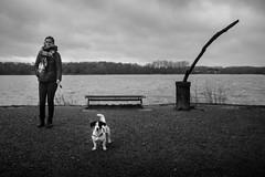 Promenade au Lac du Héron, Villeneuve-d'Ascq