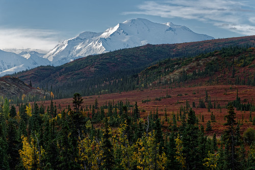A New Story of Adventure Started in Denali National Park & Preserve