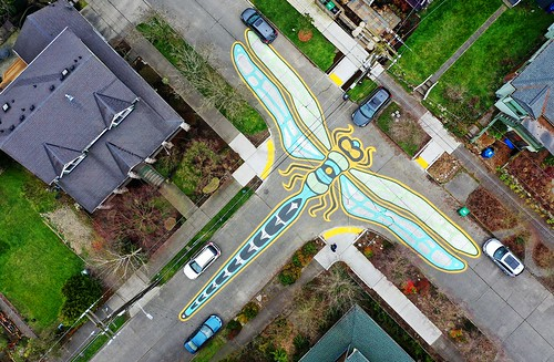 Drone Dragonfly, 4th Ave NE and NE 60th St