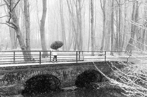 at the bridge