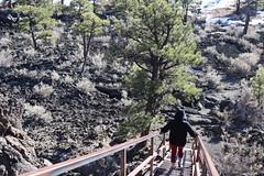 Through the Lava Flow Trail