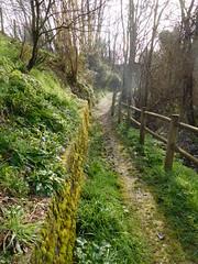 Trail in Dordogne