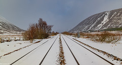 Not quite the Tracks i was hoping to see at The Pass of Drumochter.