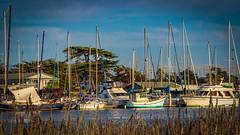 Boats of Moss Landing Harbor