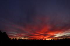 160_sunset_smarde_14.02.2020