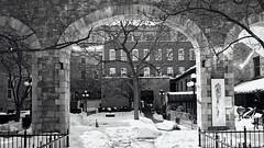 Clarendon Courtyard - Ottawa