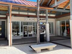 Coach The Falls Miami