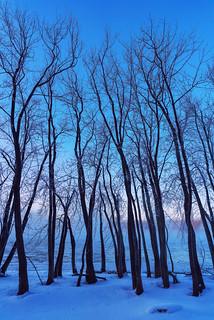 Mississippi River at Snuffy's Landing