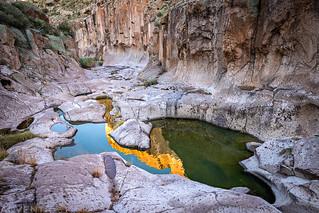 Horse Camp Canyon Pools