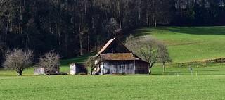 Letzi/Maur (Kanton Zürich)