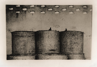 2 pigeons, Lith printing