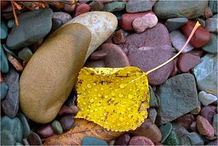 Spencers Island Beach, Nova Scotia
