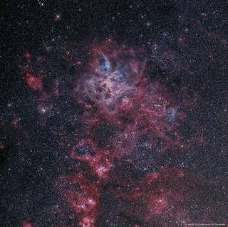 Tarantula Nebula (Wide)