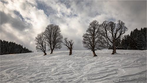 Wintertime in Tyrol