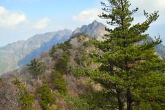 Mount Sobo views