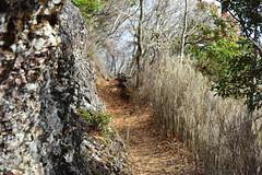 Mount Sobo trail