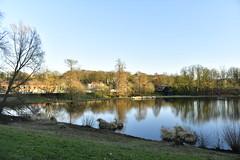 Le grand étang à la fin de la journée
