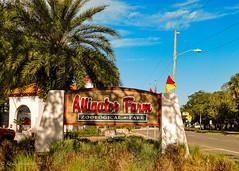 Alligator Farm Zoological Park_2020