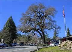 Central Ben Lomond, California