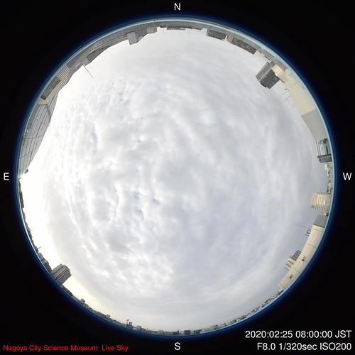 D-2020-02-25-0800_f