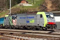 BLS Cargo, 486 504-4