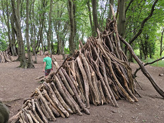 Building a den at Heartwood Forest