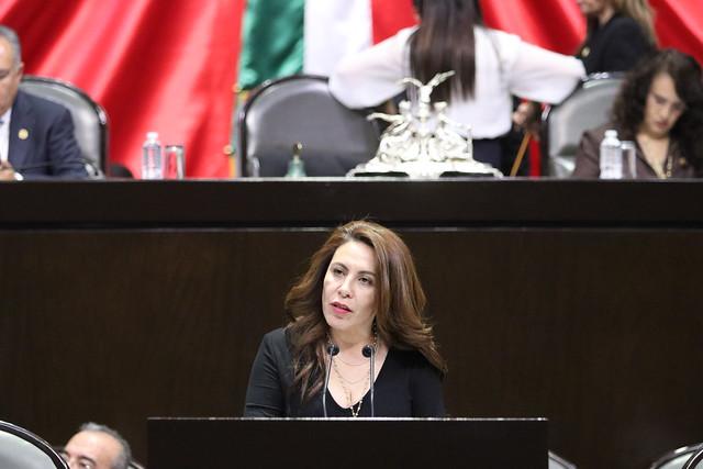25/02/2020 Tribuna dip. Rocío Barrera Badillo