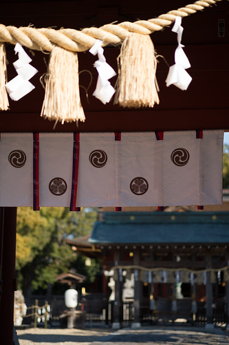 20200202 Iga Hachimangu shrine 2