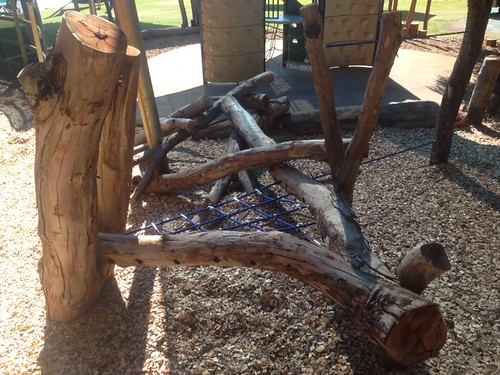 Tangled logs