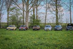 2019 - Opel Treffen