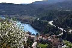 Ascó, Baix Ebre, Tarragona.