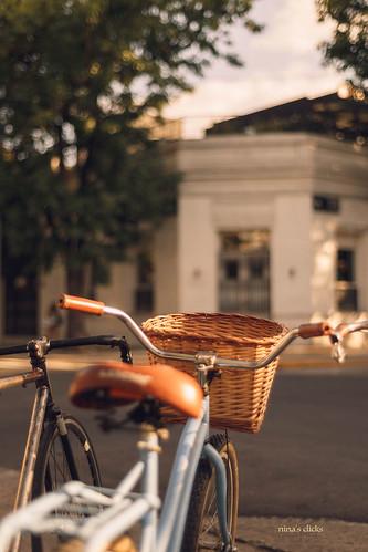 Bike & golden light