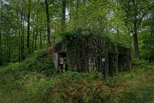 Bloc de l'Inspecteur Ouest - Ligne Maginot - Forêt de Saint Michel - Aisne
