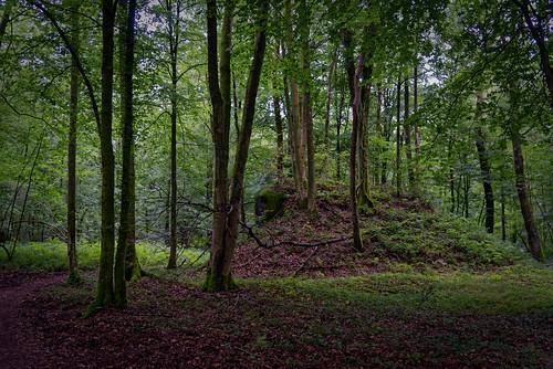 Bloc de l'Inspecteur Est - Ligne Maginot - Forêt de Saint Michel - Aisne