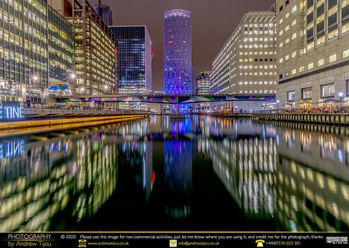 Canary Wharf - Middle Dock View