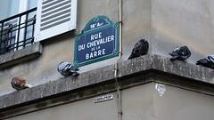 Montmartre (13)