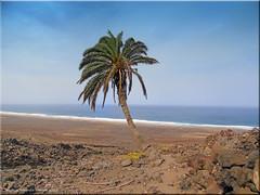 Fuerteventura 2020 - Playa Cofete