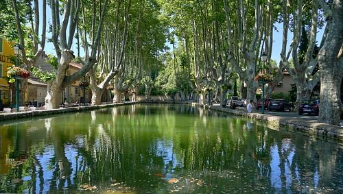 The fantastic pond
