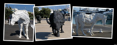 20170714_3 Very roughly textured animal sculptures in Antibes, France