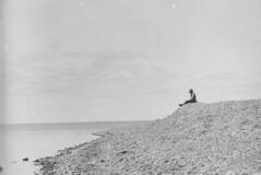 High beach of rounded pebbles at south end of Salt Point, Dawson Bay, Lake Winnipegosis, Manitoba /  Haute plage de galets à l'extrémité sud de Salt Point, baie de Dawson, lac Winnipegosis (Manitoba)