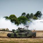 Tank you very much by Cosmin Dimitriu