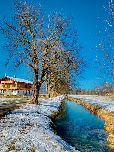Trees and house by Ebbsbach creek in winter in Ebbs, Tyrol, Austria