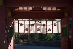 Photo:20200202 Iga Hachimangu shrine 5 By BONGURI