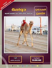 صور أشواط الجذاع العامة بالمحلي الثامن (صباح) ٢٩-٢-٢٠٢٠