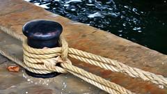 Tied Up (Quai Saint-Bernard) I